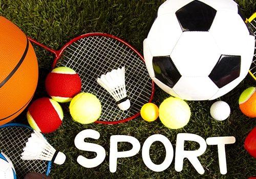 soccer qball reaction sport trainer